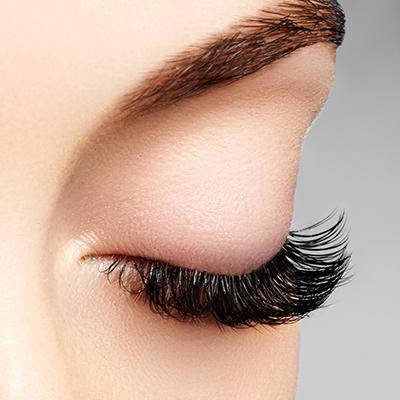 Eyelash & Brow Tint Image
